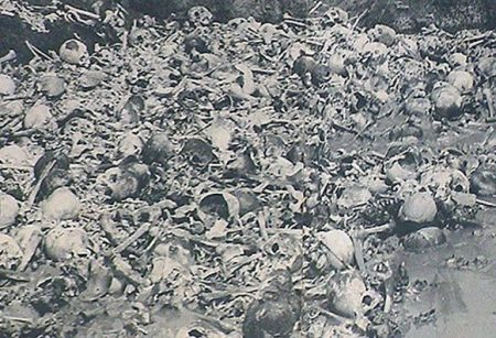 Camboya matando campos