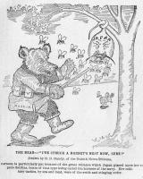 1904-el-oso-y-los-avispones-nido
