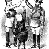 1890s-the-triple-alliance-uk