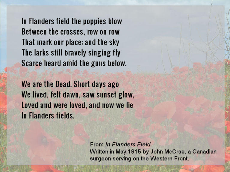 in flanders field poem essay